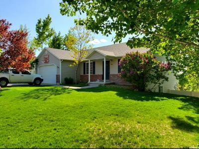 Santaquin Single Family Home For Sale: 346 S 730 E