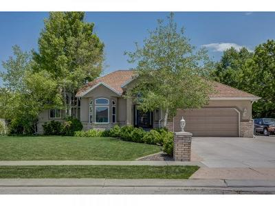 South Jordan Single Family Home Under Contract: 9465 S 2805 W