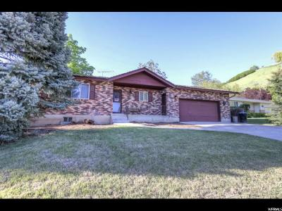 Provo Single Family Home Under Contract: 573 E 4380 N