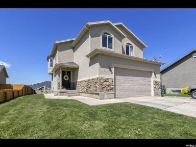 Santaquin Single Family Home For Sale: 363 E 610 S