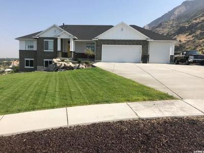 Willard Single Family Home For Sale: 590 W 7150 S
