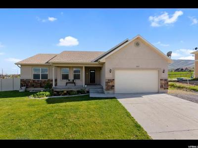Saratoga Springs Single Family Home For Sale: 227 Lariat Blvd