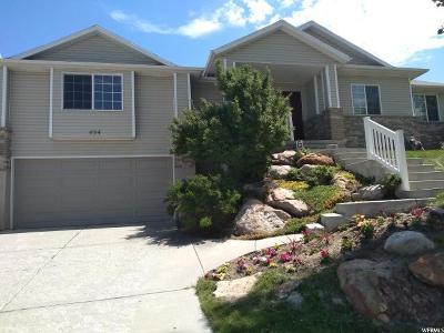Draper Single Family Home For Sale: 494 Elizabeth Day Cv