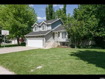 Centerville Single Family Home For Sale: 1405 N Pony Express Way