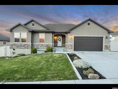 Santaquin Single Family Home For Sale: 565 S Stone Way