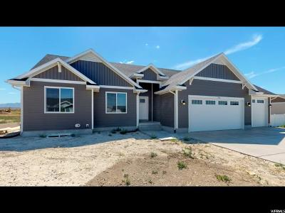 Grantsville Single Family Home For Sale: 542 S Chan Dr E