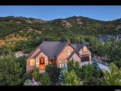 Draper Single Family Home For Sale: 14791 Maple Park Ct