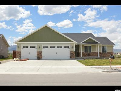 Grantsville Single Family Home For Sale: 190 S Worthington E