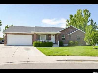 Spanish Fork Single Family Home Under Contract: 674 W 520 N