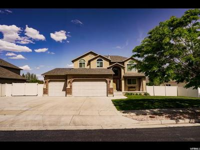 West Jordan Single Family Home For Sale: 8089 S Ponds Lodge Dr