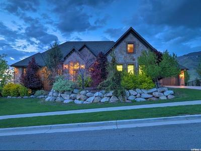 Draper Single Family Home For Sale: 14229 S Canyon Vine Cv E