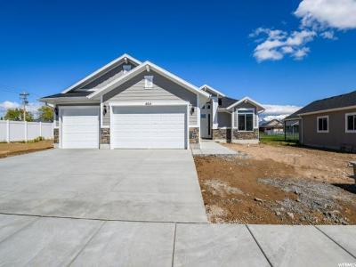 Weber County Single Family Home For Sale: 4014 S 3700 W