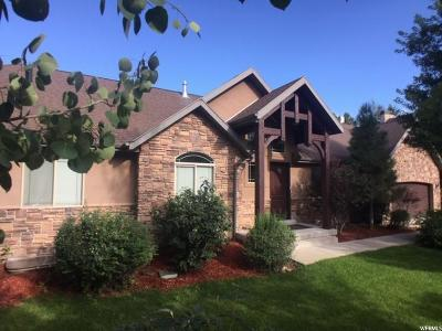 Wasatch County Single Family Home For Sale: 1203 Lime Caynon Rd W