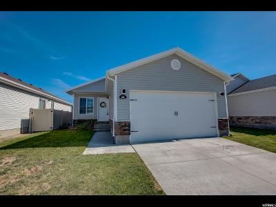 Eagle Mountain Single Family Home For Sale: 1701 E Downwater St