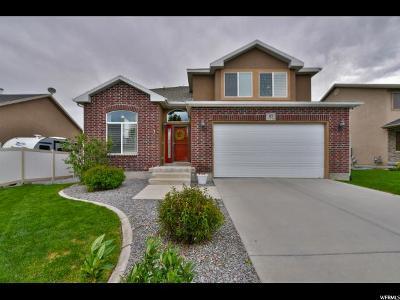 Saratoga Springs Single Family Home For Sale: 43 E Argyle Way S