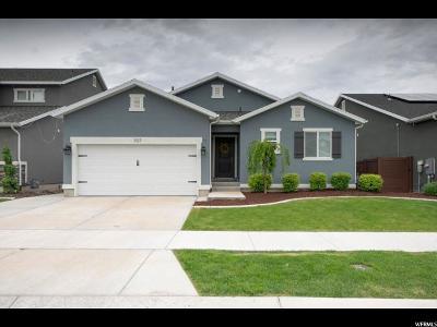 Vineyard Single Family Home Backup: 107 E 460 N
