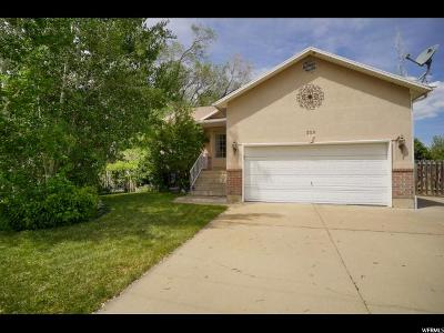 Layton Single Family Home For Sale: 229 King St