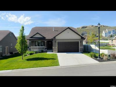 Saratoga Springs Single Family Home For Sale: 1473 S Lakeview Terrace Rd #56