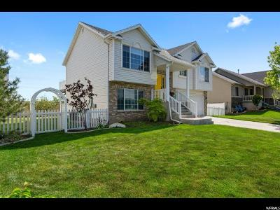 Lehi Single Family Home For Sale: 871 W 975 S