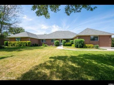 Sandy Single Family Home For Sale: 10682 S 390 E