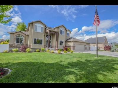 Riverton Single Family Home For Sale: 4203 W 12050 S