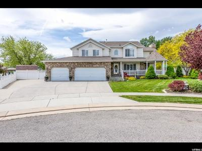 South Jordan Single Family Home For Sale: 9982 S Eden View Ct W