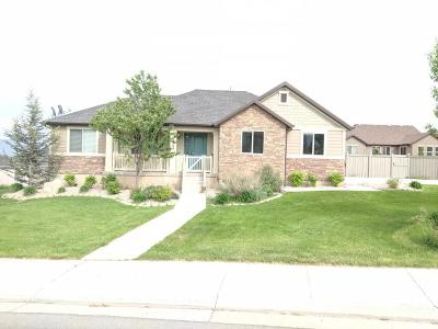 Eagle Mountain Single Family Home For Sale: 9164 N Mount Airey Dr