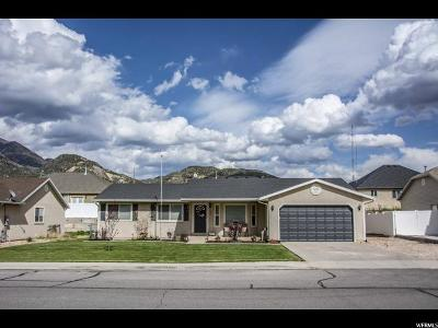 Nephi Single Family Home For Sale: 1384 N 100 E