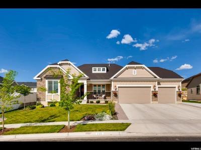 Lehi Single Family Home Backup: 2802 N Trail Side Dr W
