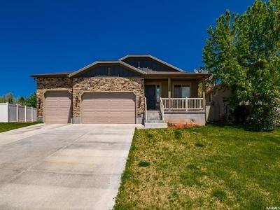 Clearfield Single Family Home For Sale: 1557 E 925 S