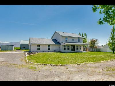 Tremonton Single Family Home Under Contract: 10960 N 8400 W