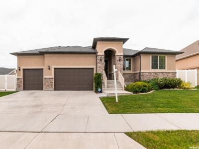 West Jordan Single Family Home For Sale: 5043 W Bayard Ln S