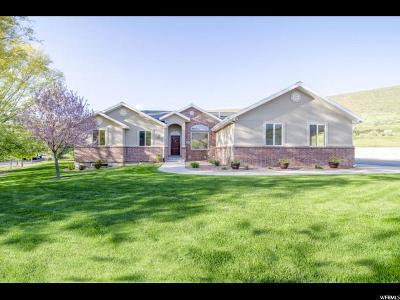 Wasatch County Single Family Home For Sale: 235 E 100 N