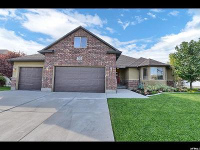 Riverton Single Family Home For Sale: 12421 S Huron Rd W