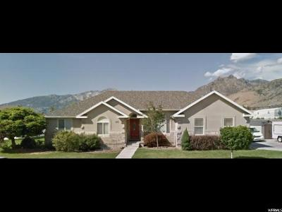 American Fork Single Family Home Under Contract: 1275 E Murdock Dr