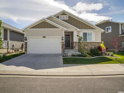 Layton Single Family Home For Sale: 1182 N 2125 E