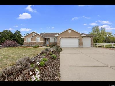 Riverton Single Family Home For Sale: 13163 S 1830 W