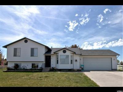 Preston Single Family Home For Sale: 425 W 250 S
