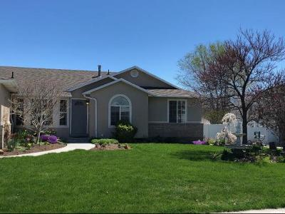 Riverton Single Family Home For Sale: 12227 S Lampton View Dr W