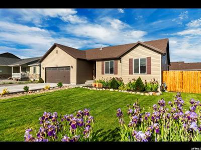 Grantsville Single Family Home Backup: 236 S Ranch Rd