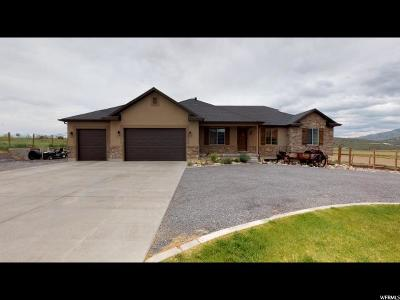 Eagle Mountain Single Family Home For Sale: 8512 N Gooseberry Dr