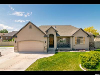 Orem, Provo Single Family Home For Sale: 1245 N 2410 W