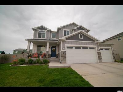 Orem, Lindon, Vineyard Single Family Home For Sale: 47 E Zen Rd N