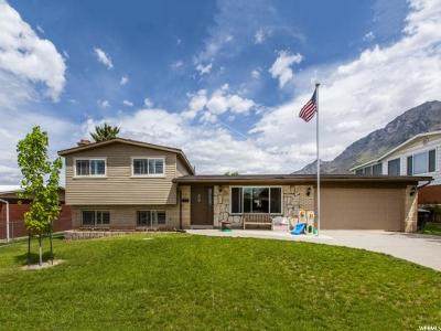 Orem, Provo Single Family Home For Sale: 1217 E 640 S