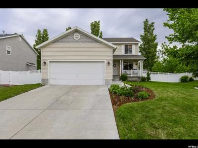 Tooele County Single Family Home For Sale: 88 E Galley Ln N
