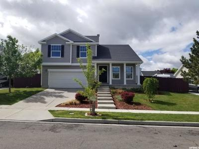 Tooele County Single Family Home For Sale: 113 W 1530 N