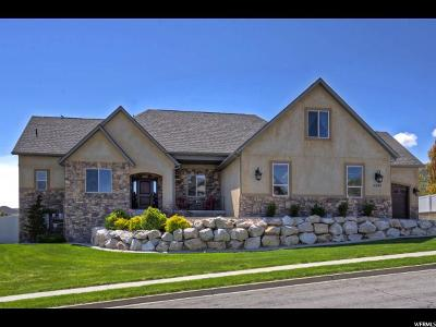 Herriman Single Family Home Backup: 14809 S Alden View Cir W