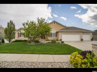 North Ogden Single Family Home For Sale: 555 E 3600 N