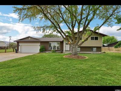 Ogden Single Family Home Backup: 3746 S 2850 W