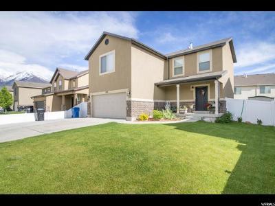Spanish Fork Single Family Home For Sale: 1984 E 1130 S